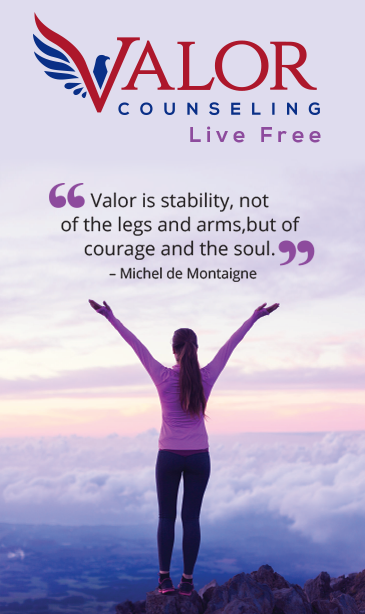 valro counseling banner